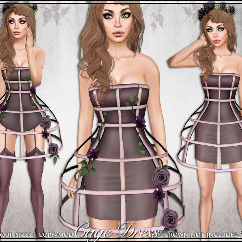 Cage Dress: Mesh Dress and Lingerie